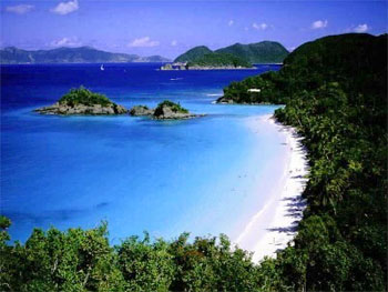 trunk bay on st john usvi
